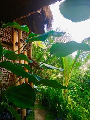 Cocon en Bambou